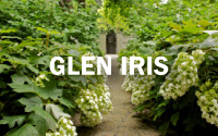 Glen Iris Garden Manicure Photo Gallery