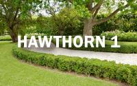 Hawthorn Garden Manicure Gallery